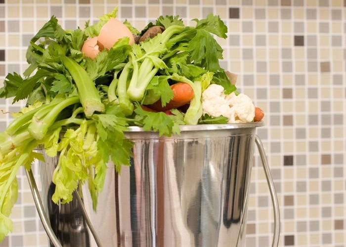 kompost anlegen biomüll küche