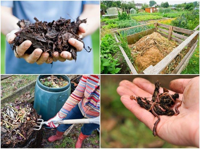 kompost anlegen biomüll schritte zum dünger