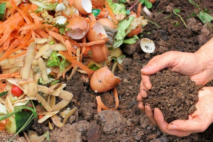 kompost anlegen biomüll