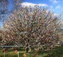 Die Tradition besagt, dass der Eierbaum zu Ostern bunt verziert sein muss!