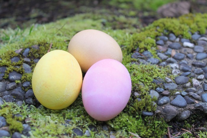 ostereier bemalen diy ideen natürliche farben von den pflanzen pastellfarben