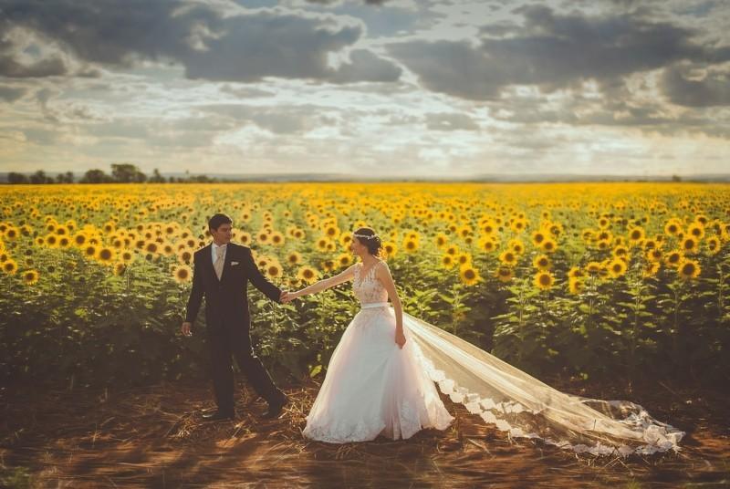 sommerhochzeit brautpaar im sonnenblumenfeld