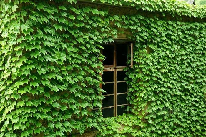 weltreisen gouqi wunderschöne architektur verlassenes dorf