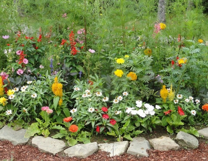 Bunte Gartenblumen Mulch Günstige Gartenideen 55 Günstige Gartenideen:  Einen Schönen Garten Mit Wenig Geld Gestalten!