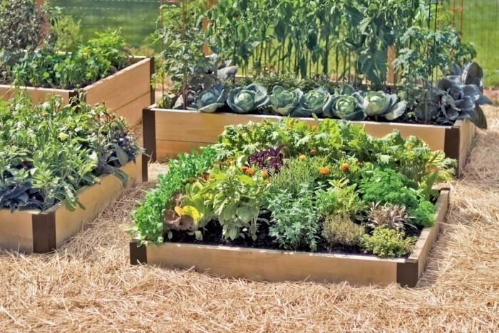 55 g nstige gartenideen einen sch nen garten mit wenig for Garden design kilkenny