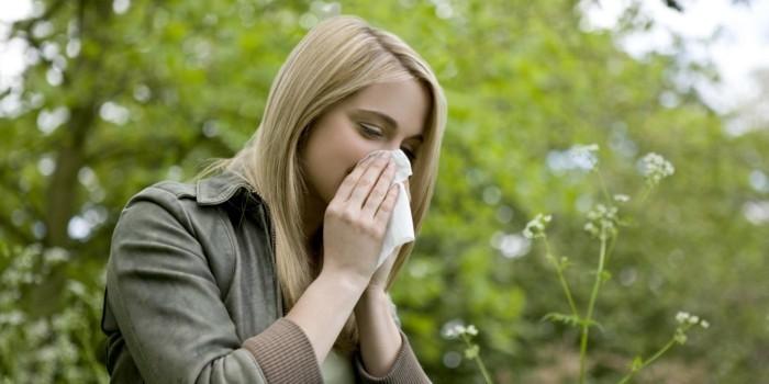 laufende nase im fruehling pollenallergie symptome