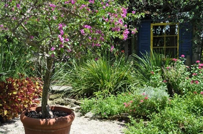 Mediterrane Gartengestaltung Ideen Für Eine Frische Gartengestaltung  Mediterraner Garten In 50 Bildern U2013 Ein Vorbild, Wie Sie Urlaubslaune Und  Wohlgefühl In ...