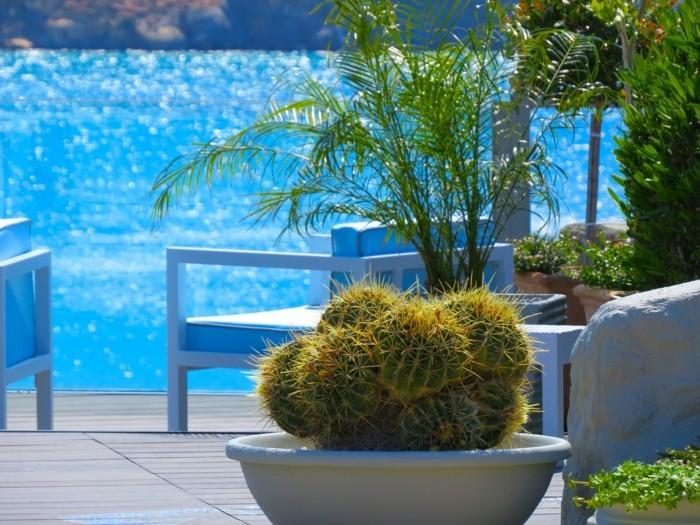 Mediterraner Garten in 50 Bildern- Ein Vorbild, wie Sie Urlaubslaune ...