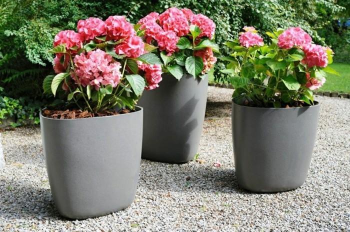 pflanzkübel moderne pflanzbehälter mit schönen blumen