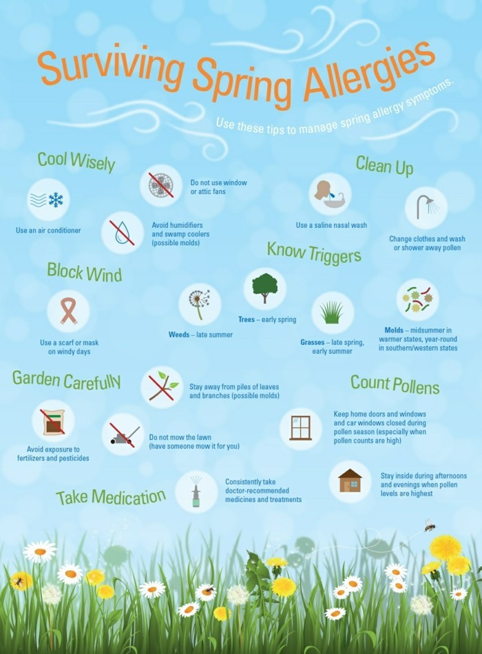 pollenallergie im fruehling symptome lindern