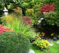 Schöne Gärten – Praktische Tipps und Inspiration in 110 Bildern