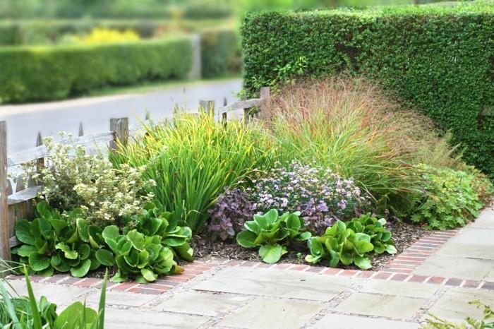 schöne gärten gartenpflanzen richtig kombinieren und positionieren