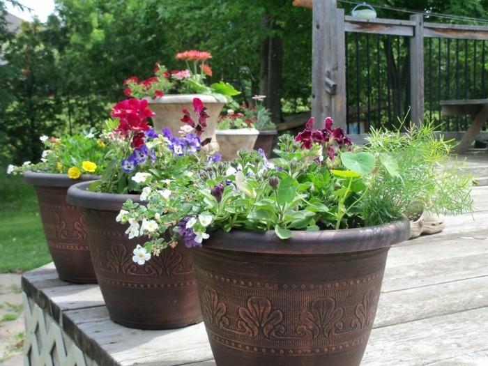 schöne gärten gartenpflanzen richtig kombinieren