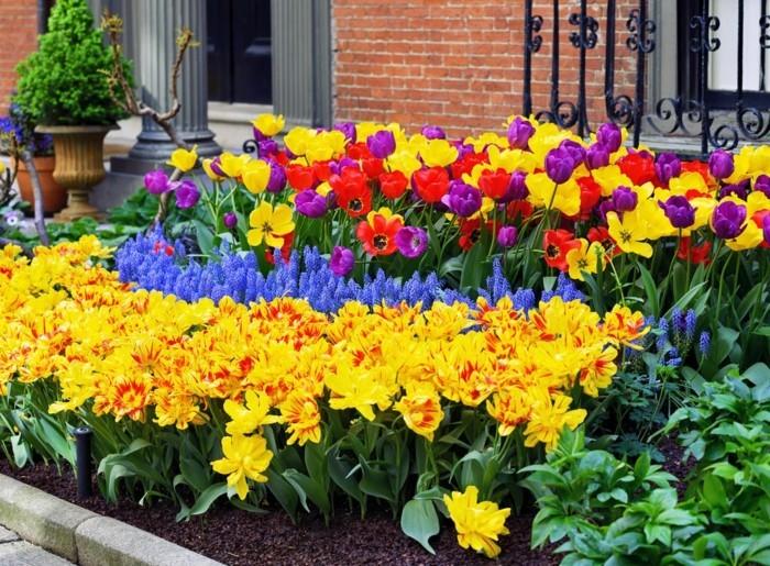 garten gestalten farben kombinieren für eine schöne atmosphäre