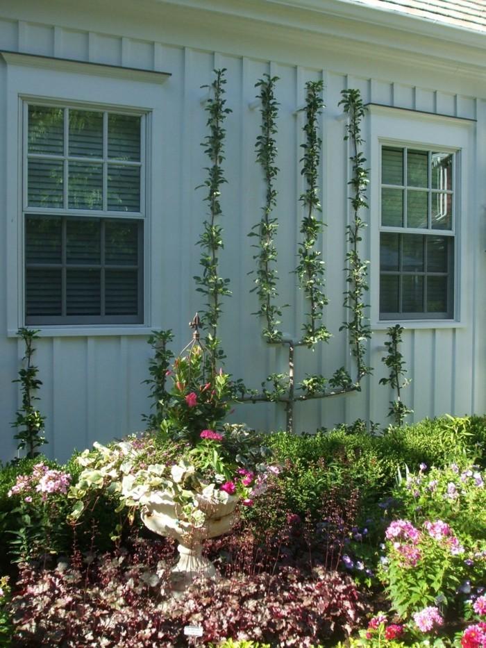 gartenideen mit spalier und wunderschöne zierpflanzen