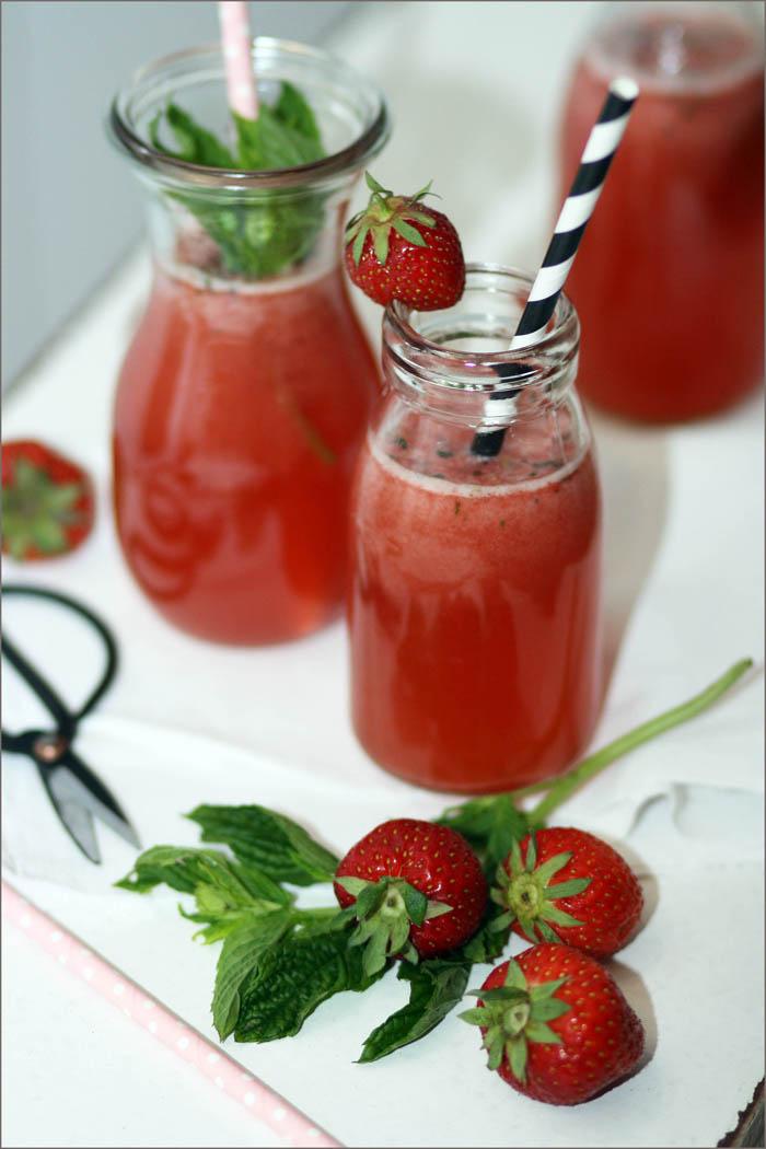 limonade selber machen sommer rezepte erdbeer rhabarber minze