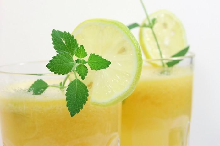 limonade selber machen sommer rezepte erfrischend