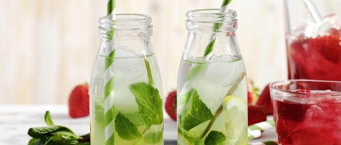 limonade selber machen sommer rezepte holunder minze