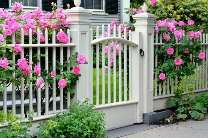 moderne gartengestaltung frische dekoideen für den vorgarten