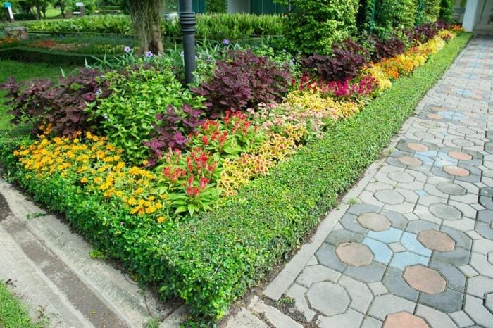 moderne gartengestaltung gartenpflanzen kombinieren im vorgarten