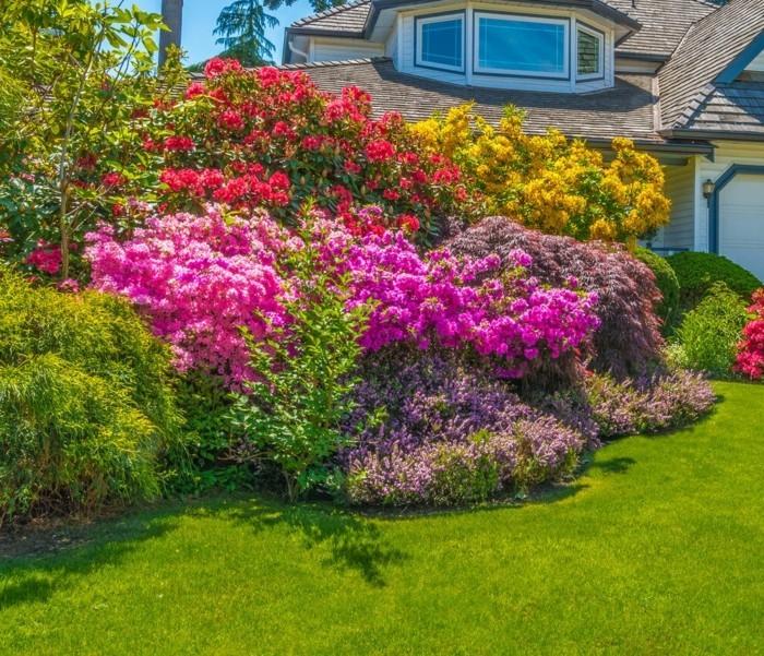 moderne gartengestaltung große büsche erfrischen den vorgarten