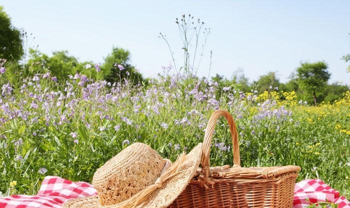 picknick ideen rezepte freizeit planen alleine picknicken