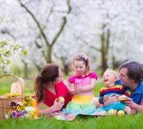 11 Picknick Ideen, Anregungen und Rezepte
