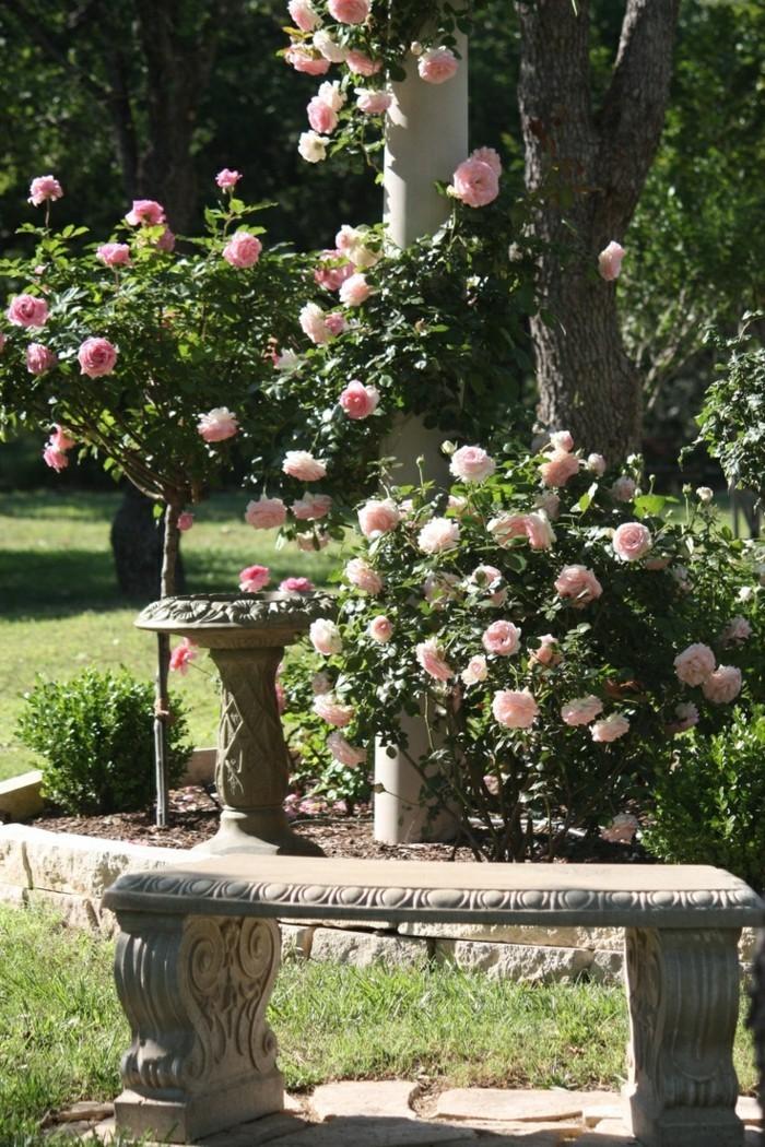 rosen im garten schöne dekoideen für den außenbereich