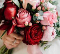 Rosen – einmalige Schönheiten mit betörendem Duft verzaubern die Sinne