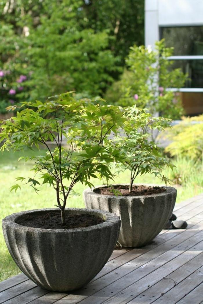 sichtschutz pflanzkübel große pflanzkübel als deko und schutz