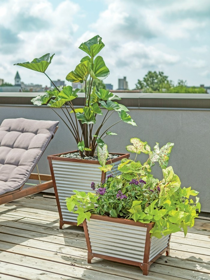 sichtschutz pflanzkübel terrasse gestalten und die privatsphäre schützen