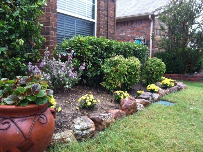 steingarten anlegen blumenbeete gestalten wunderschöne blüten