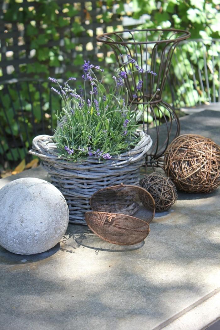 Steingartenpflanzen unsere 6 favoriten machen die for Modernen garten anlegen