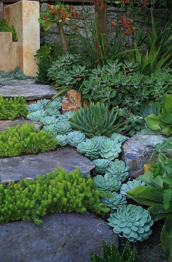 steingarten anlegen schöne gartenideen mit sukkulenten