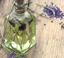 5 naturreine ätherische Öle, die Zecken vertreiben