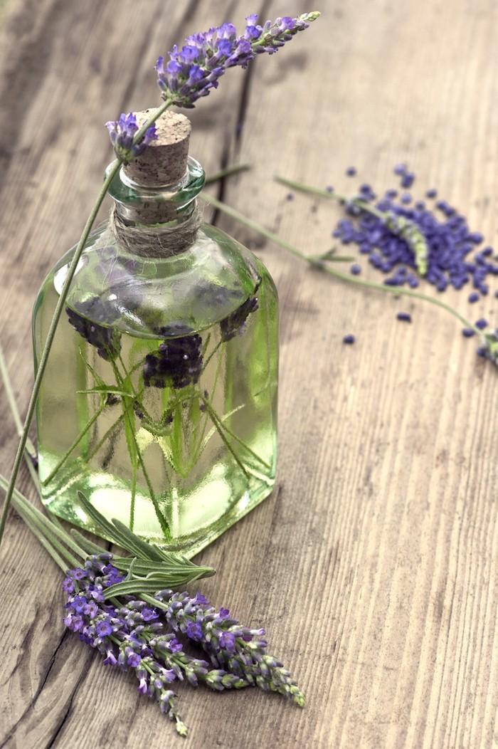 naturreine ätherische öle zecken zitronenöl gegen zecken lavendel