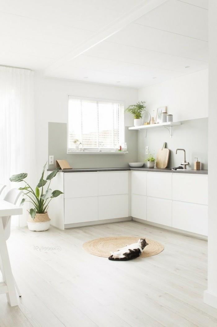 weiße küche modernes interieur mit pflanzen und holzboden