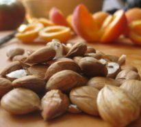 Sind Aprikosenkerne gesund oder gefährlich?- 10 Fakten und Mythen