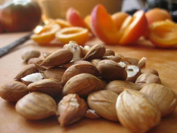 aprikosenkerne2