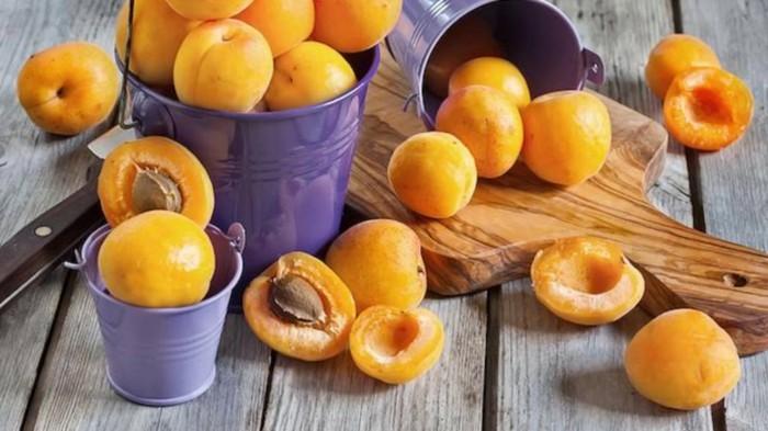 aprikosenkerne9