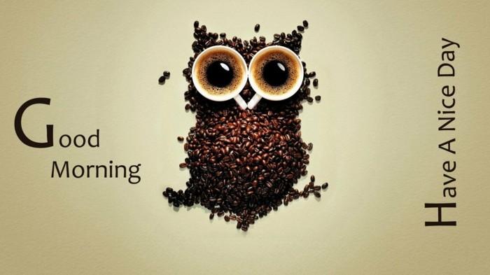 eule aus kaffeebohnen kaffeetassen good morning morgengruss