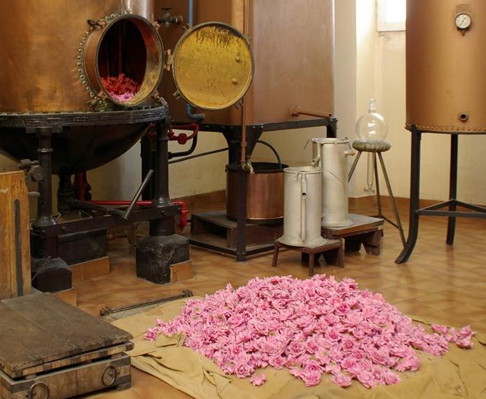 parfümherstellung 2
