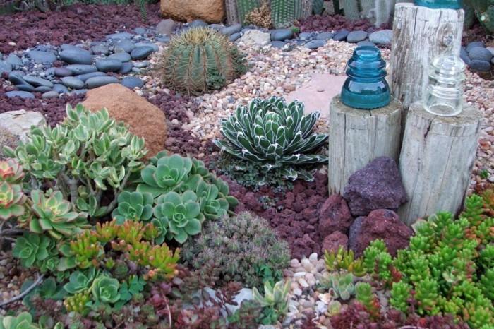 sukkulenten für draußen mit steinen dekorieren