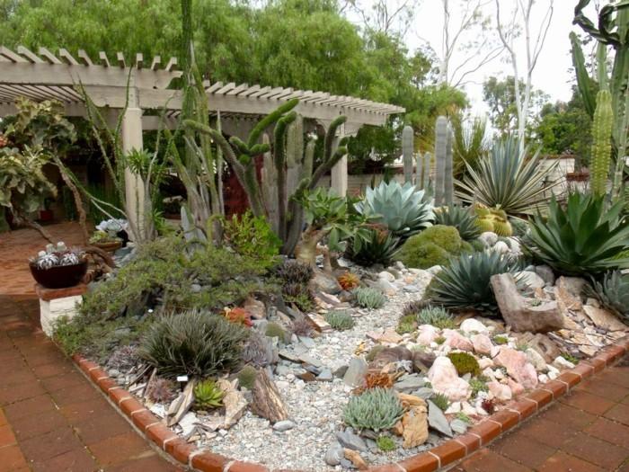 sukkulenten für draußen steingarten anlegen und mit sukkulenten dekorieren