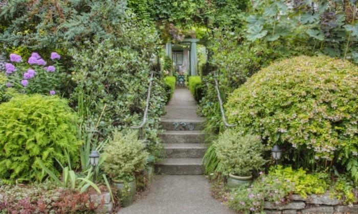 vorgarten viel grüne