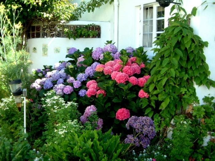 die fassade durch grün und rosa verschönern