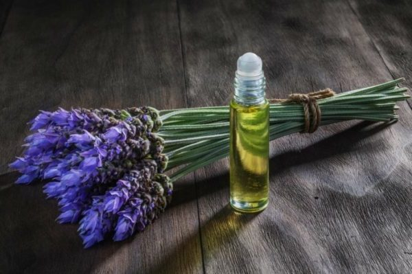 lavendelöl naturreine öle lavendel pflanzen ätherische öle