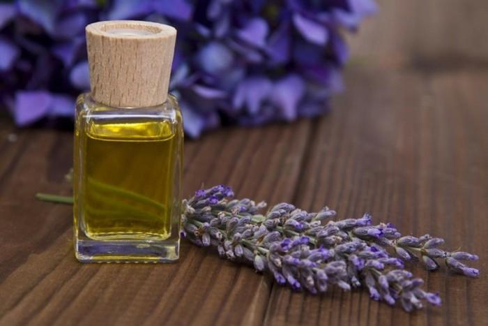 lavendelöl naturreine öle lavendel pflanzen 3