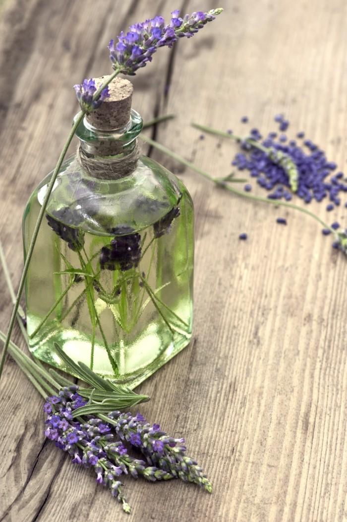 lavendelöl naturreine öle lavendel pflanzen3