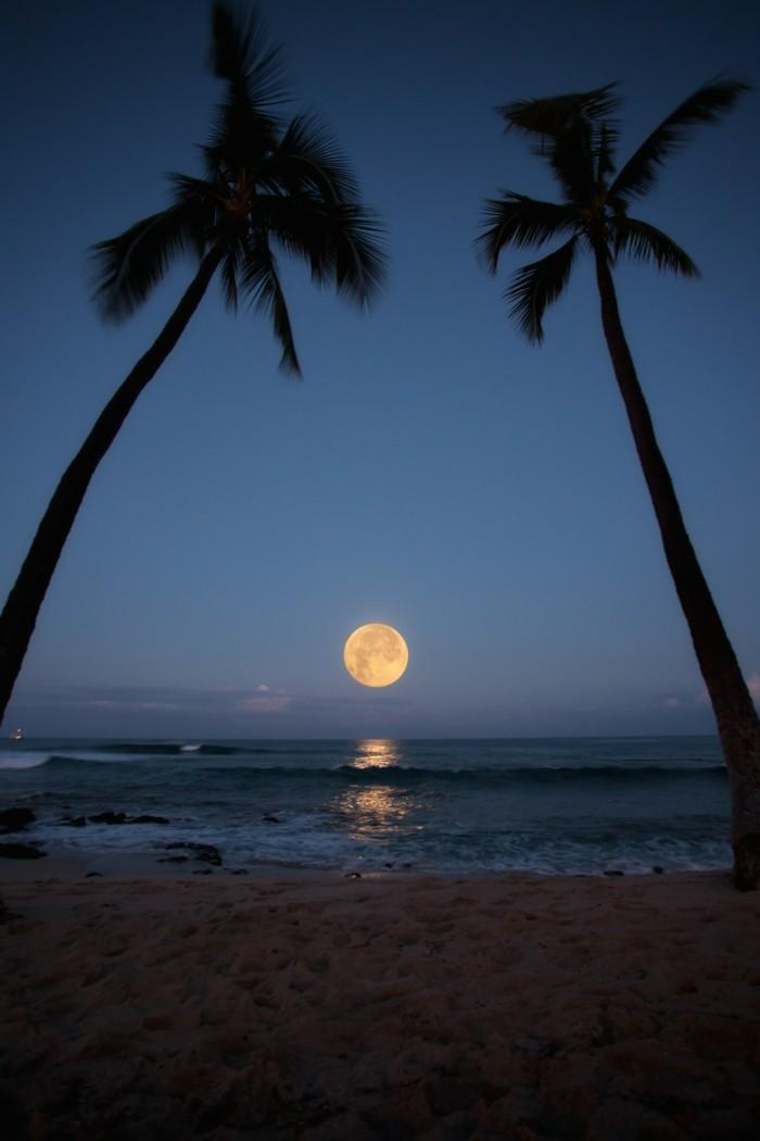 mond über dem horizont wunderschöne aussicht genießen